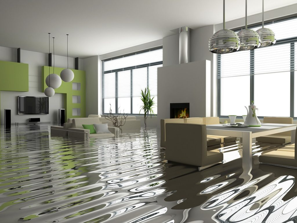 Standing Water in Home