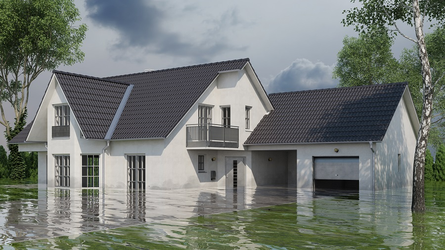 Risks Associated with DIY Water Damage Restoration