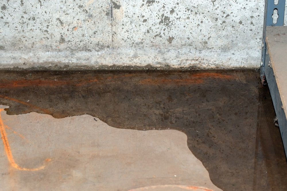 The Importance of Flood Damage Restoration in Mold Prevention