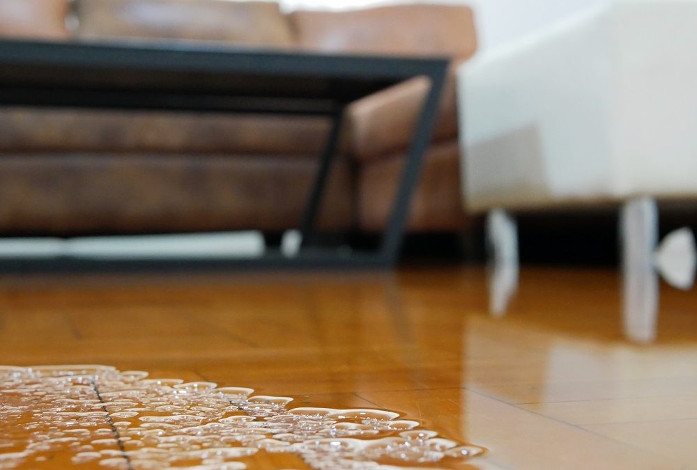Understanding the Long-Term Impact of Water Damage