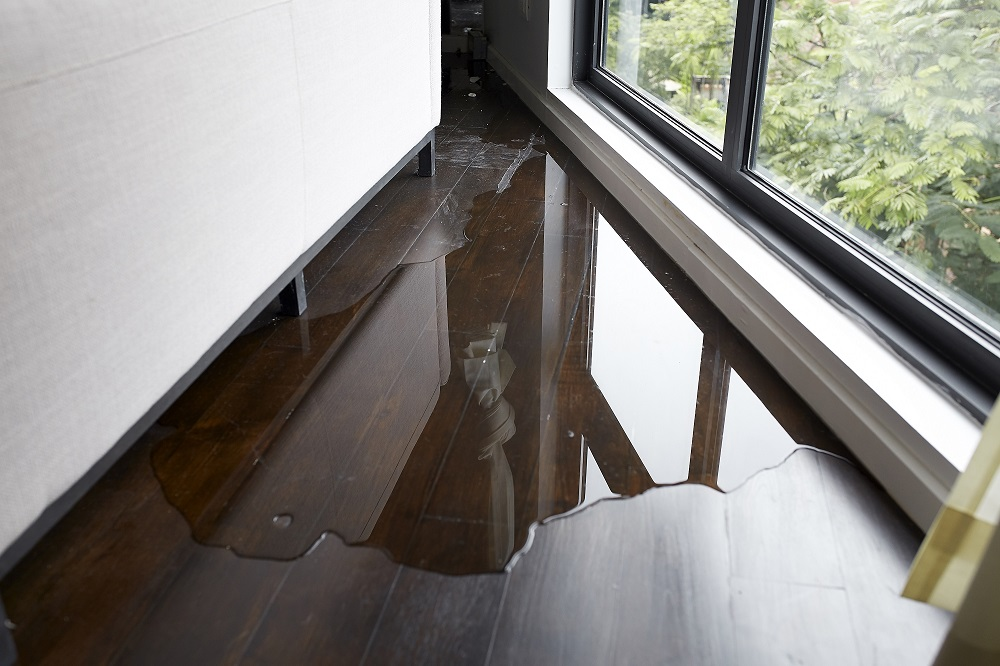 Services to Expect from Flood Damage Restoration Companies