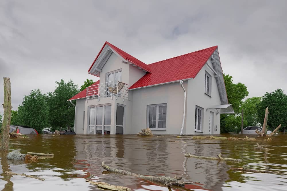 5 Important Steps to Take after a Flood